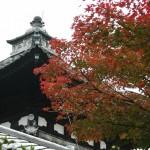 japan_momiji-gari_2012_50