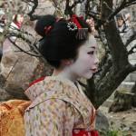 japan_baikasai_2013_17