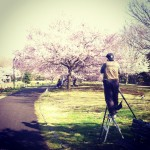 japan_early_sakura_blossom_01