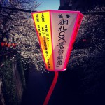 japan_early_sakura_blossom_04