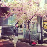 japan_early_sakura_blossom_06