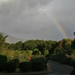 И такую радугу мне там показали. Срочно загадываем желание!