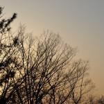 Небо постепенно меняет свой цвет