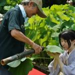 japan_sake_lotus_26