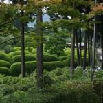 А это я спустилась в парк храма. Зеленое кругло-подстриженное - кусты азалии