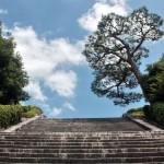 Лестница в 230 ступеней