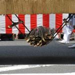 Деревянные плашки для подкладывания под колёса при повороте