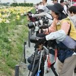 Какая-то студия фотолюбителей на выезде. Занятие на плэнере, съемка цветочков в естественной среде обитания. 90% учеников студии - бабульки-пенсионерки. Остальные - дедульки. Но техника у них такая, что я аж слюну пустила