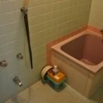 Ванная в японском стиле. В самой ванне можно только сидеть, поджав коленки к подбородку. Мыться - снаружи (в смысле, снаружи ванны, около крантика и под душем), стоя или сидя на прилагающейся табуреточке