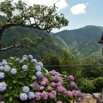 А мимо Хотэя идет дорога к основным храмам горы - Сэйганто-дзи и Кумано-Нати-тайся