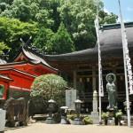 Храмы-побратимы. Слева - синто, Кумано-Нати-тайся. Справа - буддизм, Сэйганто-дзи