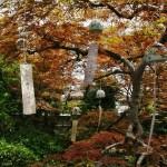 japan_wind_bell_42