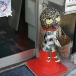 Симпатишный и застенчивый птице-монстр продает газеты у входа в газетный же киоск