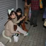 japan_ichijo-dori_35