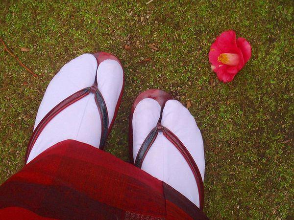 japanese_love_of_flowers_03