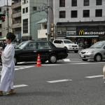 Костюм замужней дамы среднего возраста времен позднего Эдо. Костюм надет на даму по имени Гёкуран, которая жила в Киото в конце XVIII века. Гёкуран была женой известного художника Икэ-но Тайга, а также сама была известной художницей. Вместе с мужем они жили и работали в маленькой студии в Киото. Такой прообраз богемы на японский лад
