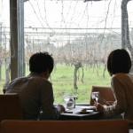 А потом мы пошли обедать в ихний ресторан. Такая вот там романтическая обстановка с видом на мокрый виноградник
