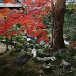 japan_daikaku_44