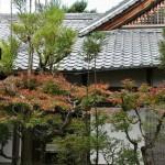 japan_ninna-ji_05