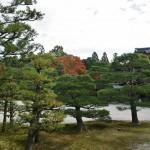 japan_ninna-ji_07