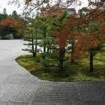 japan_ninna-ji_10