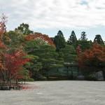 japan_ninna-ji_11