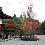 japan_ninna-ji_14