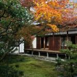 japan_ninna-ji_15