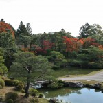 japan_ninna-ji_26
