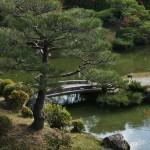 japan_ninna-ji_27