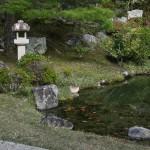 japan_ninna-ji_31