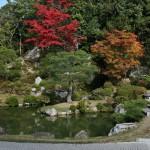 japan_ninna-ji_32