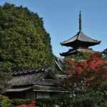 japan_ninna-ji_34