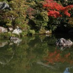 japan_ninna-ji_35