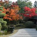 japan_ninna-ji_36