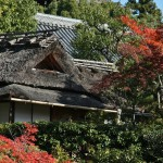 japan_ninna-ji_43