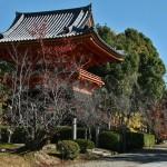 japan_ninna-ji_49