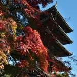 japan_ninna-ji_55