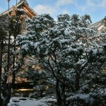 japan_ninna-ji_snow_07
