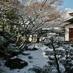 japan_ninna-ji_snow_10