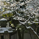 japan_ninna-ji_snow_13
