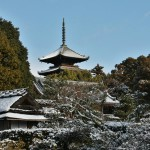 japan_ninna-ji_snow_20