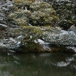 japan_ninna-ji_snow_23