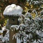 japan_ninna-ji_snow_28
