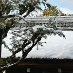 japan_ninna-ji_snow_33