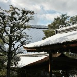 japan_ninna-ji_snow_34