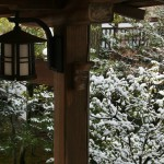 japan_ninna-ji_snow_35