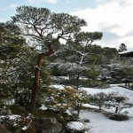 japan_ninna-ji_snow_36