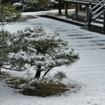 japan_ninna-ji_snow_38