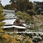 japan_ninna-ji_snow_41